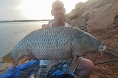 big-game-ebro-meervalvissen-karpervissen-spanje-3