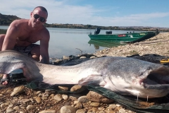 big-game-ebro-meervalvissen-spanje